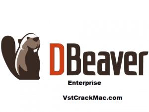 DBeaver Enterprise 21.2.1 Crack + License Key [Latest 2021]